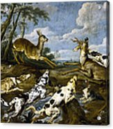 Deer Hunting Acrylic Print
