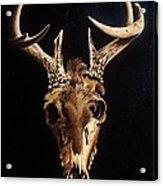 Deer Skull Acrylic Print