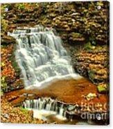 Delaware Falls - Ricketts Glen Acrylic Print