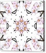 Delicate Cherry Blossom Fractal Kaleidoscope Acrylic Print