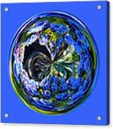 Delicate Orb Acrylic Print