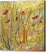 Delicate Poppies Acrylic Print