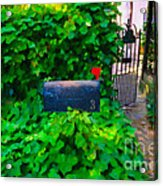 Deliver The Mail Acrylic Print