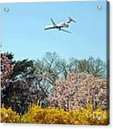 Delta Airlines Acrylic Print