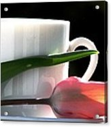 Demitasse And Tulips Acrylic Print