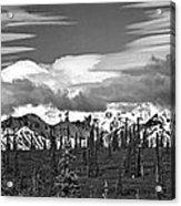 Denali In Clouds Acrylic Print