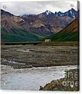 Denali National Park 4 Acrylic Print