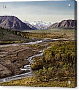 Denali Toklat River Acrylic Print