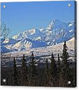 Denali Winter Acrylic Print