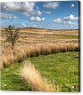 Denbigh Moors Acrylic Print by Adrian Evans