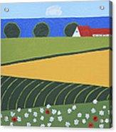 Denmark 5 Acrylic Print