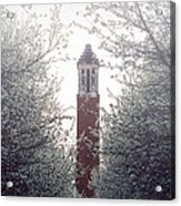 Denny Chimes Foggy Blossoms Acrylic Print by Ben Shields