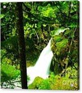 Denny Camp Falls  Acrylic Print