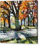 Denver Park 3 Acrylic Print