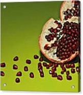 Departed Acrylic Print by Evelina Kremsdorf