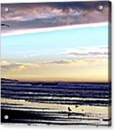 Descendants As Many As The Sand On The Shore Of The Sea Acrylic Print