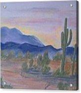 Desert Aglow Acrylic Print