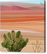 Desert, Cactus Brush, Mountains In Acrylic Print