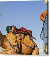 Desert Dance Of The Dromedary And The Camel Driver Acrylic Print