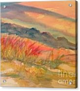 Desert Dreams Acrylic Print