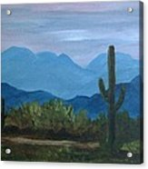 Desert Evening Acrylic Print