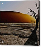 Desert Floor Acrylic Print