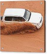 Desert Fun Acrylic Print