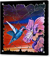 Desert Hummingbird Acrylic Print