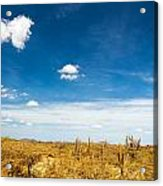 Desert Landscape With Deep Blue Sky Acrylic Print