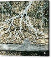Desert Lightning Acrylic Print