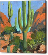 Desert Morning Saguaro Acrylic Print