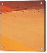 Desert Namibia Acrylic Print