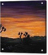 Desert Night Acrylic Print by Anastasiya Malakhova