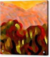 Desert Olive Trees Acrylic Print