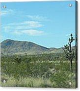 Desert Panoramic Acrylic Print