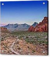 Desert Path Acrylic Print