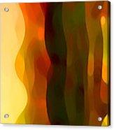 Desert Pattern 1 Acrylic Print