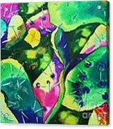 Desert Poppy Among The Cactus Acrylic Print