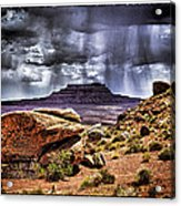 Desert Rain Acrylic Print by David Neely