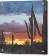 Desert Silhouette Acrylic Print