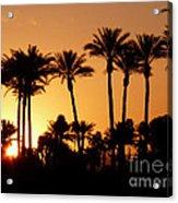 Desert Silhouette Sunrise Acrylic Print