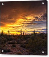 Desert Skies  Acrylic Print