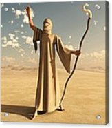 Desert Sorcerer Acrylic Print