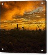 Desert Southwest Skies  Acrylic Print