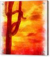 Desert Sunset Photo Art 01 Acrylic Print