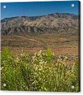 Desert Valley Scene 7 Acrylic Print