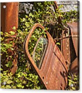 Deserted And Overgrown Acrylic Print