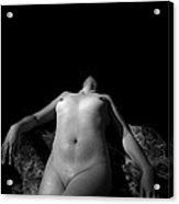 Desire Acrylic Print