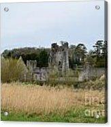 Desmond Castle Views Acrylic Print