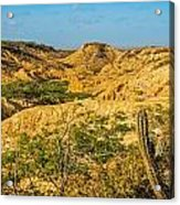 Desolate Desert Landscape Acrylic Print